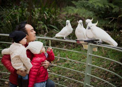 5-chinninguyenphotography travel photography wildlife photography cute animals